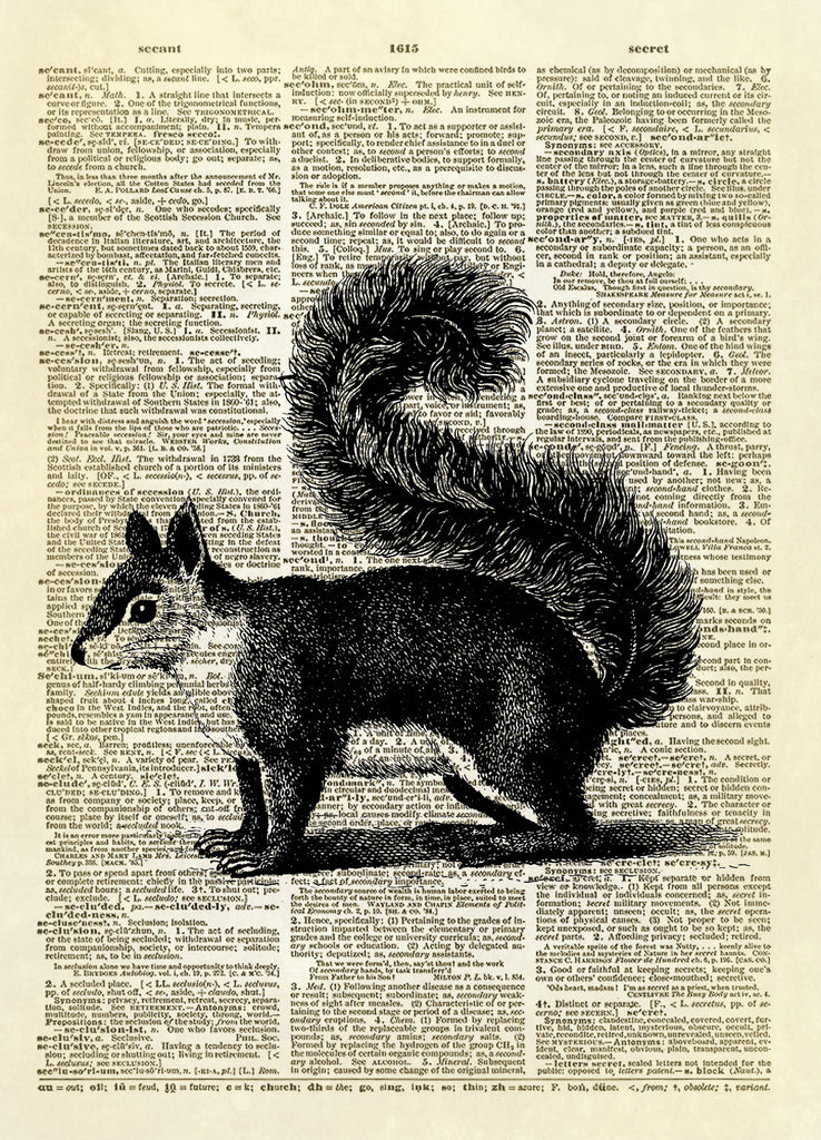 Fluffy-tailed Squirrel Animal Dictionary Art Print