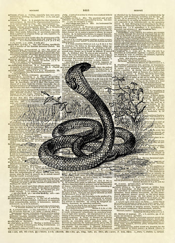 Cobra Snake Dictionary Art Print