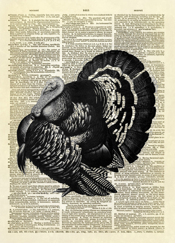 Thanksgiving Turkey Dictionary Art Print