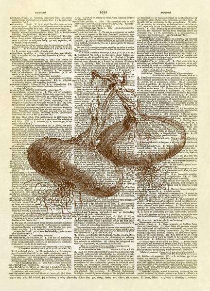 Two Onion Bulbs Dictionary Art Print