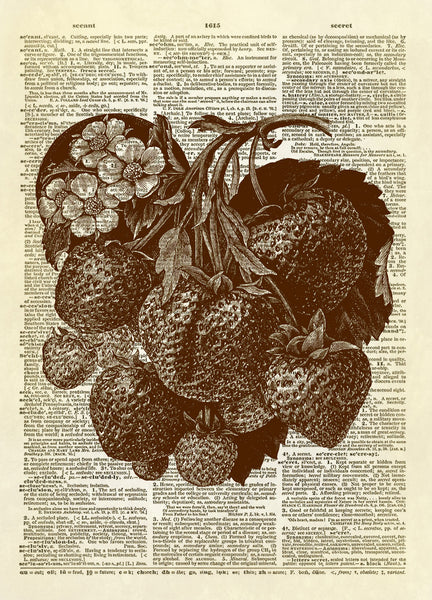 Strawberry Fruit on the Vine Dictionary Art Print