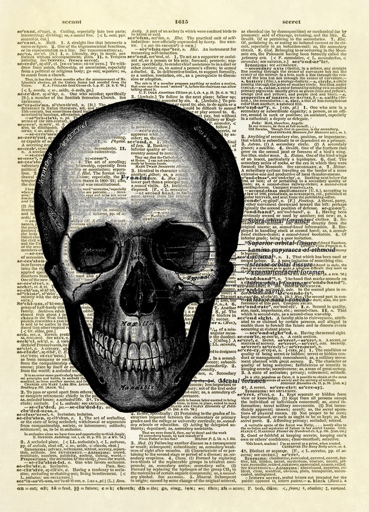 Gray's Anatomy Human Skull Diagram Dictionary Art Print