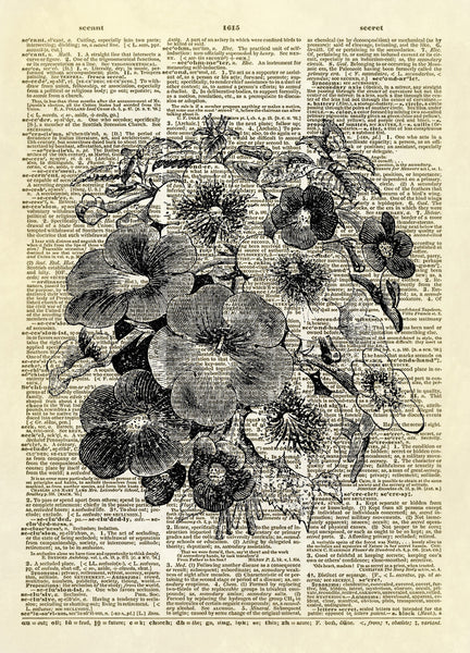 Pansy Flowers Floral Dictionary Art Print