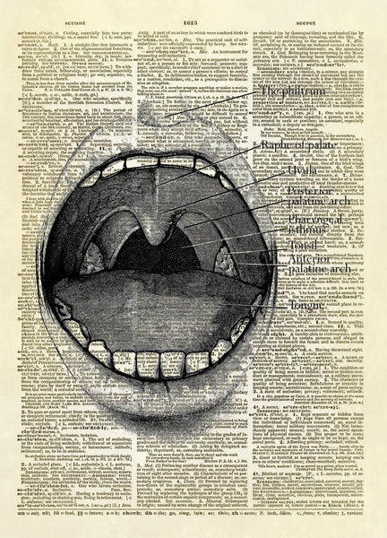 Human Mouth Diagram Dictionary Art Print