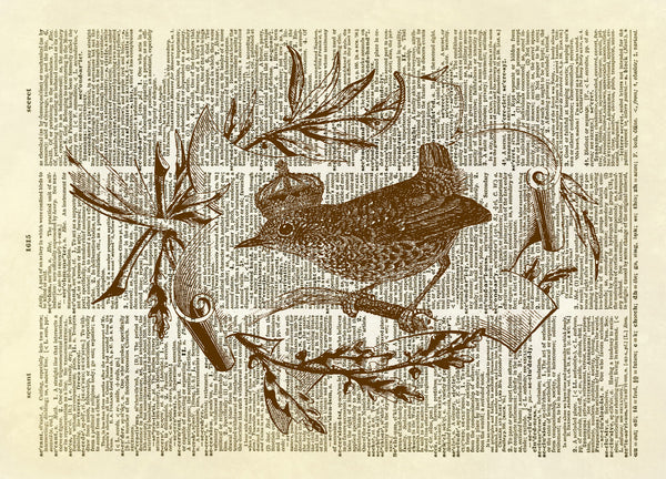 Wren Bird with Crown in Laurel Branch Frame Dictionary Art Print