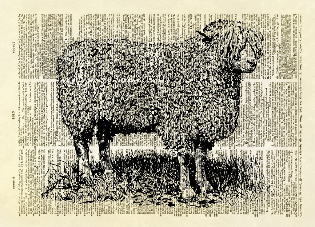 Wooly English Sheep Farm Animal Dictionary Art Print