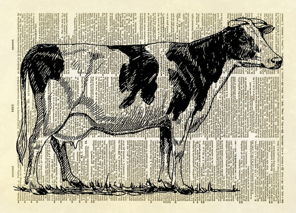 Spotted Holstein Cow Dictionary Art Print