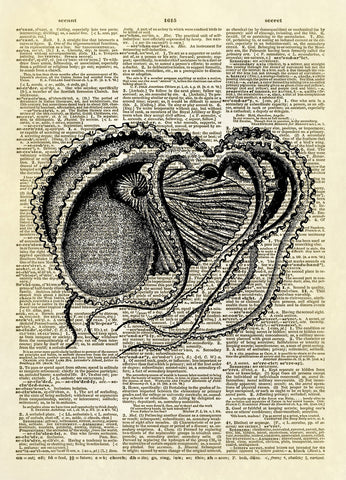 Argonaut Art Dictionary Art Print