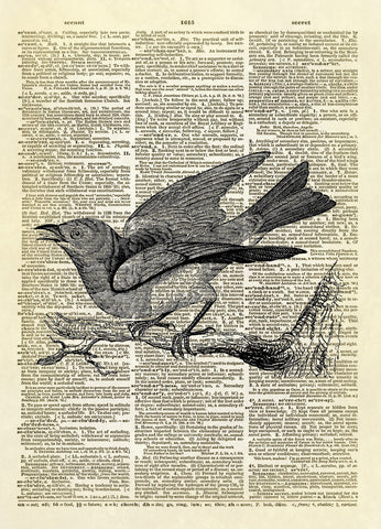 Bluebird Dictionary Art Print