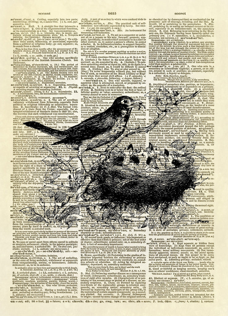 Mother Bird Feeding Babies Dictionary Art Print