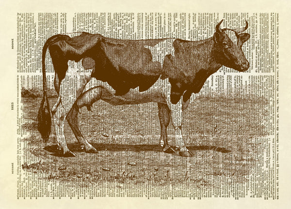 Milk Cow Farm Animal Dictionary Art Print