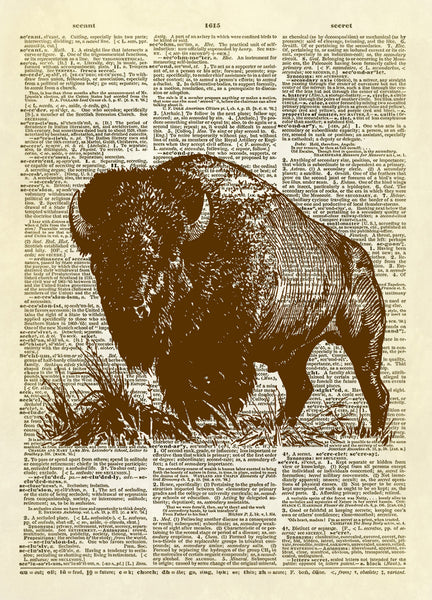 Bison Dictionary Art Print