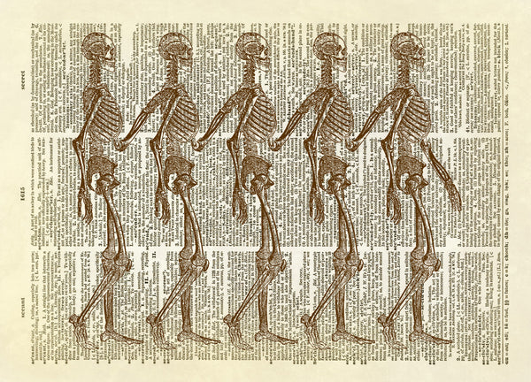 Walking Row of Skeletons Halloween Dictionary Art Print