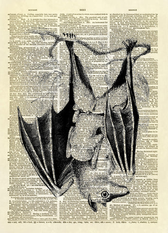 Hanging Bat Halloween Dictionary Art Print