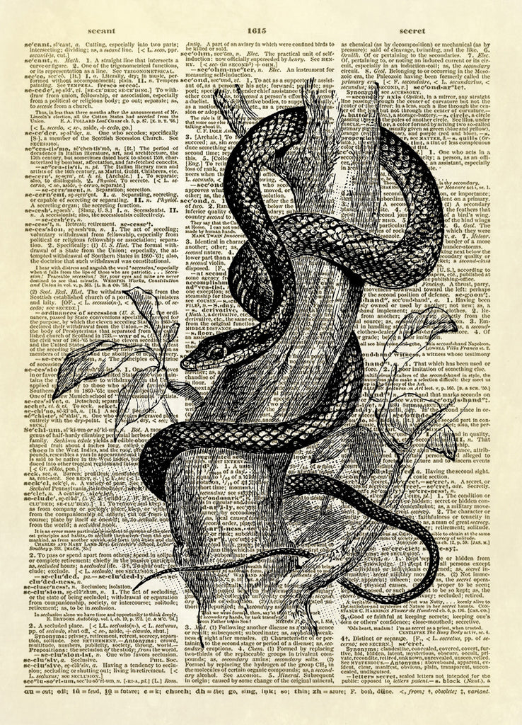 Tree Snake Dictionary Art Print