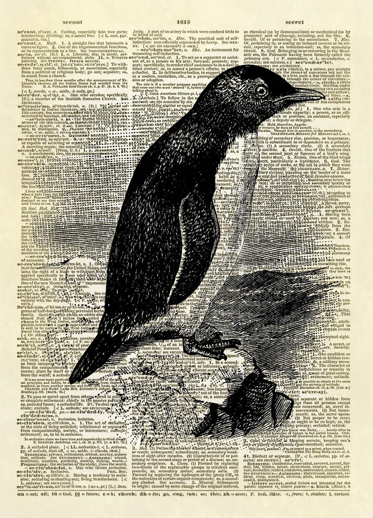Penguin Bird Animal Dictionary Art Print