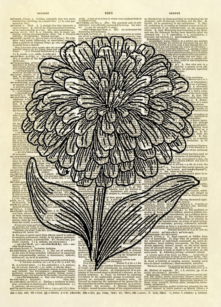 Zinnia Flower Dictionary Art Print