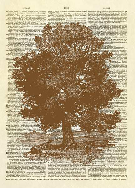 Oak Tree Dictionary Art Print