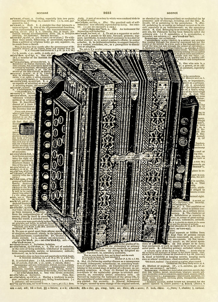 Accordion Muscial Instrument Dictionary Art Print