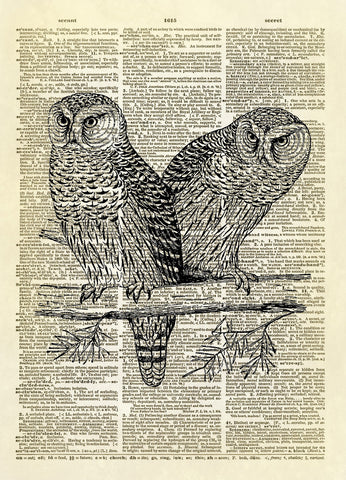 Two Owls on a Branch Dictionary Art Print