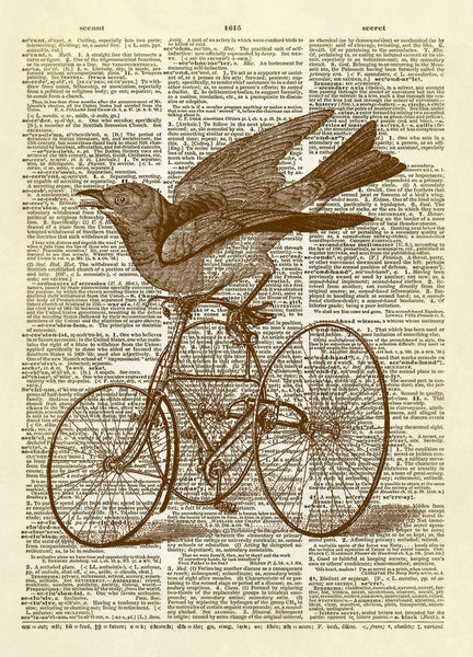 Bird on a Vintage Tricycle Dictionary Art Print