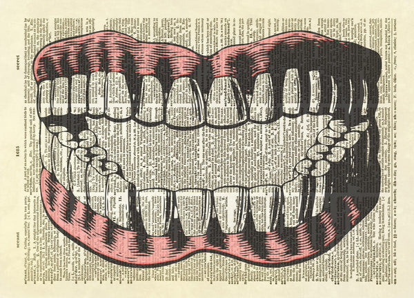 Dentures Teeth Dictionary Art Print