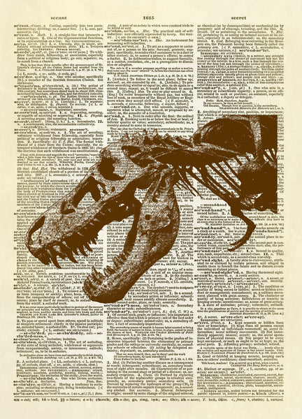 T-Rex Dinosaur Skeleton Dictionary Art Print