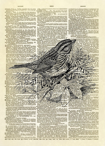 Sparrow Bird on a Branch Dictionary Art Print