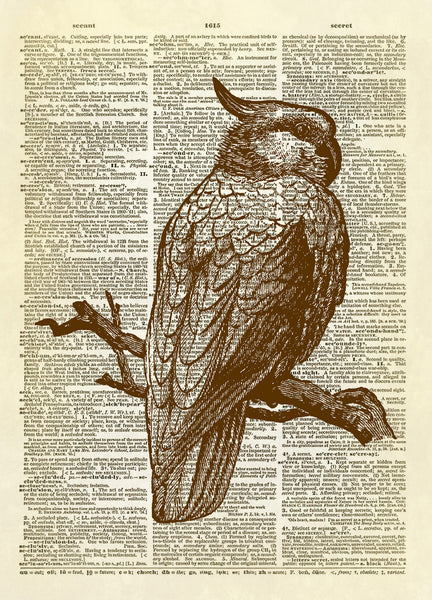 Cockatoo Parrot Bird Dictionary Art Print