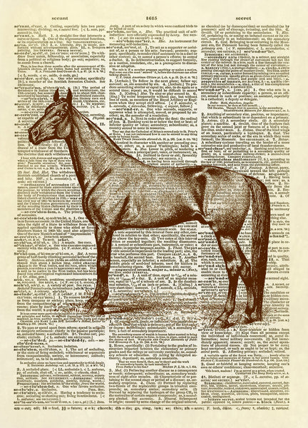 Race Horse Farm Animal Dictionary Art Print