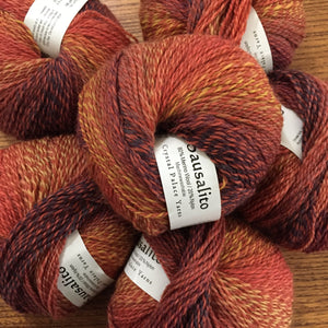 Sausalito Sock yarn color 8470