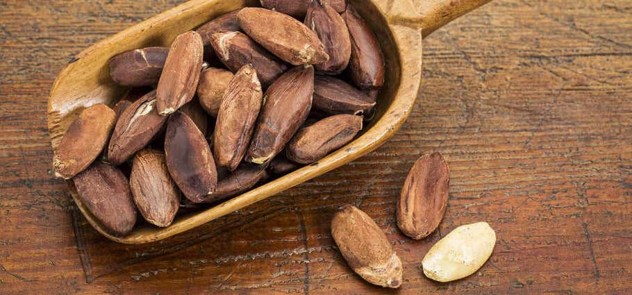 Amazing Health Benefits of Eating Pili Nuts