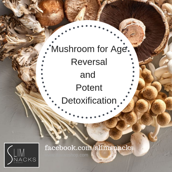 Awesome Ways to Use Mushrooms For Age-Reversing & Potent Detoxification