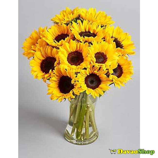 Sunflowers Bouquet - Flower Arrangements | Davaoshop - The 1St Online Shop In Davao Since 2003