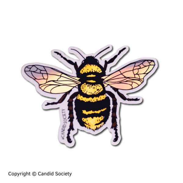 CANDID SOCIETY - Abeja