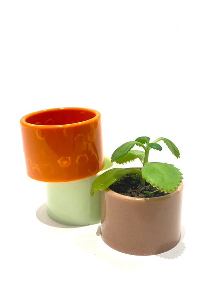 MIND BLOWING PRODUCT- Mini Round  Planter