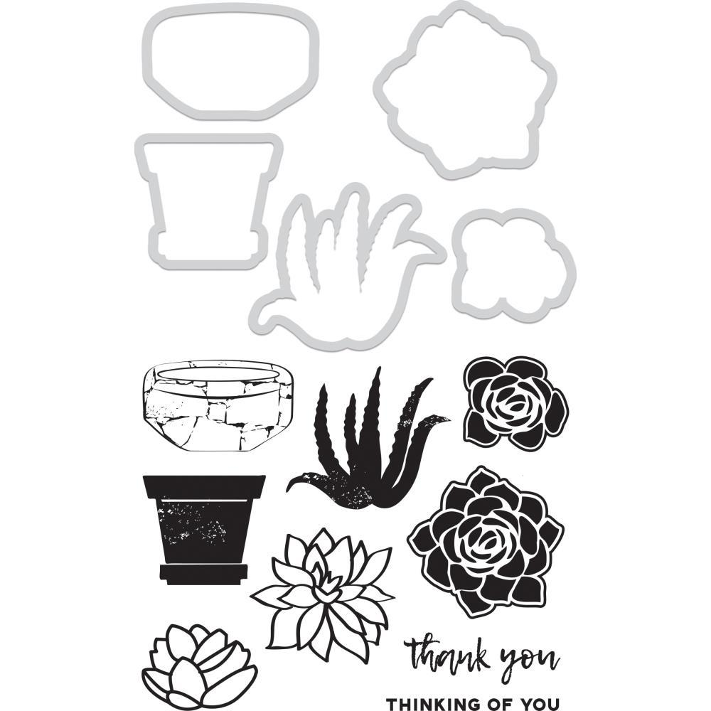 Kaisercraft Dies & Stamps - Succulents