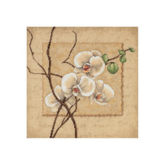 Dimensions Counted cross-stitch Kit 12in x 12in Oriental Orchids (14 counts)