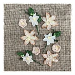 49 and Market Stargazers Paper Flowers 9 pack - Cashmere