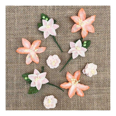 49 and Market Stargazers Paper Flowers 9 pack Peach Sorbet