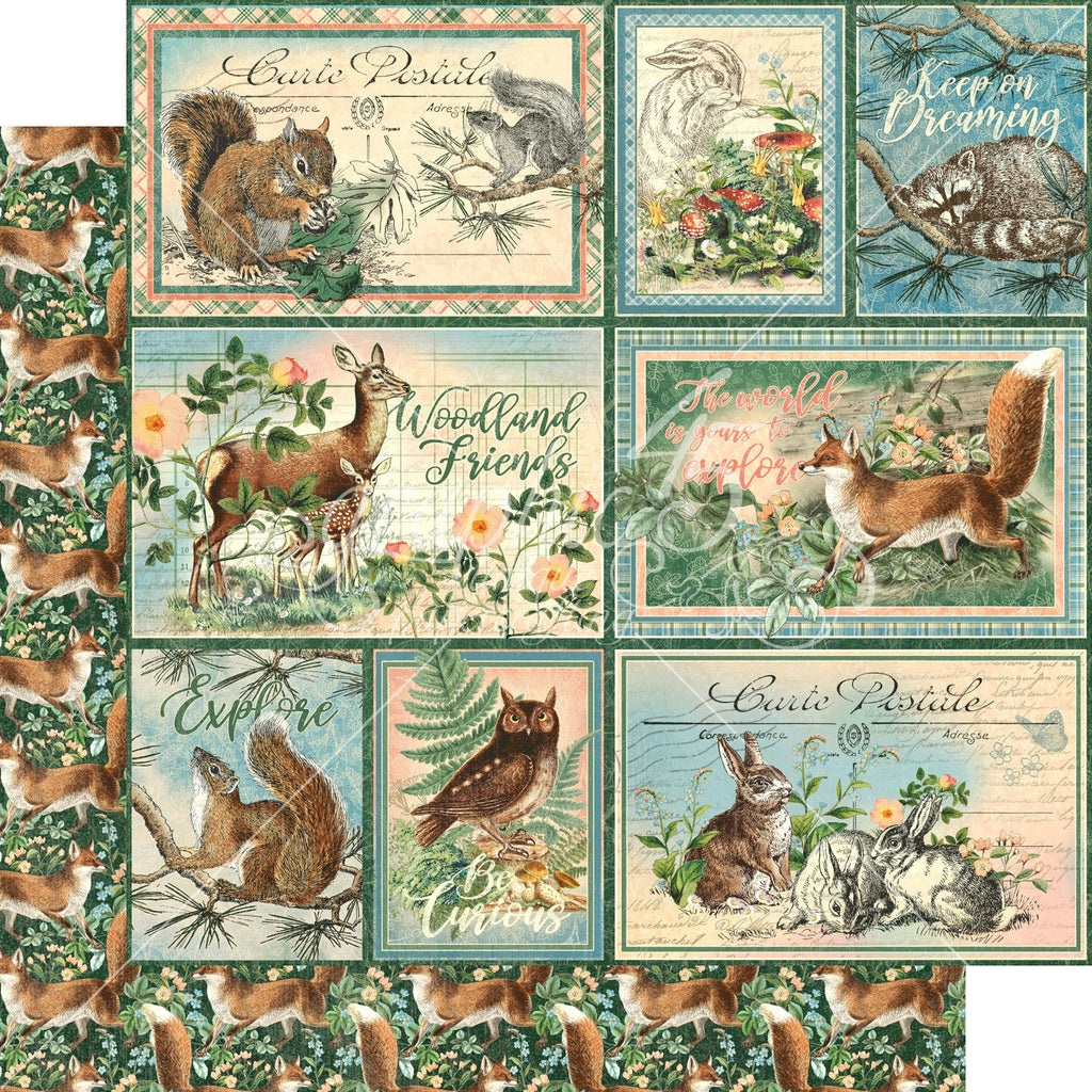 "Graphic 45 Woodland Friends Double-Sided Cardstock 12""X12"" - Be Clever"