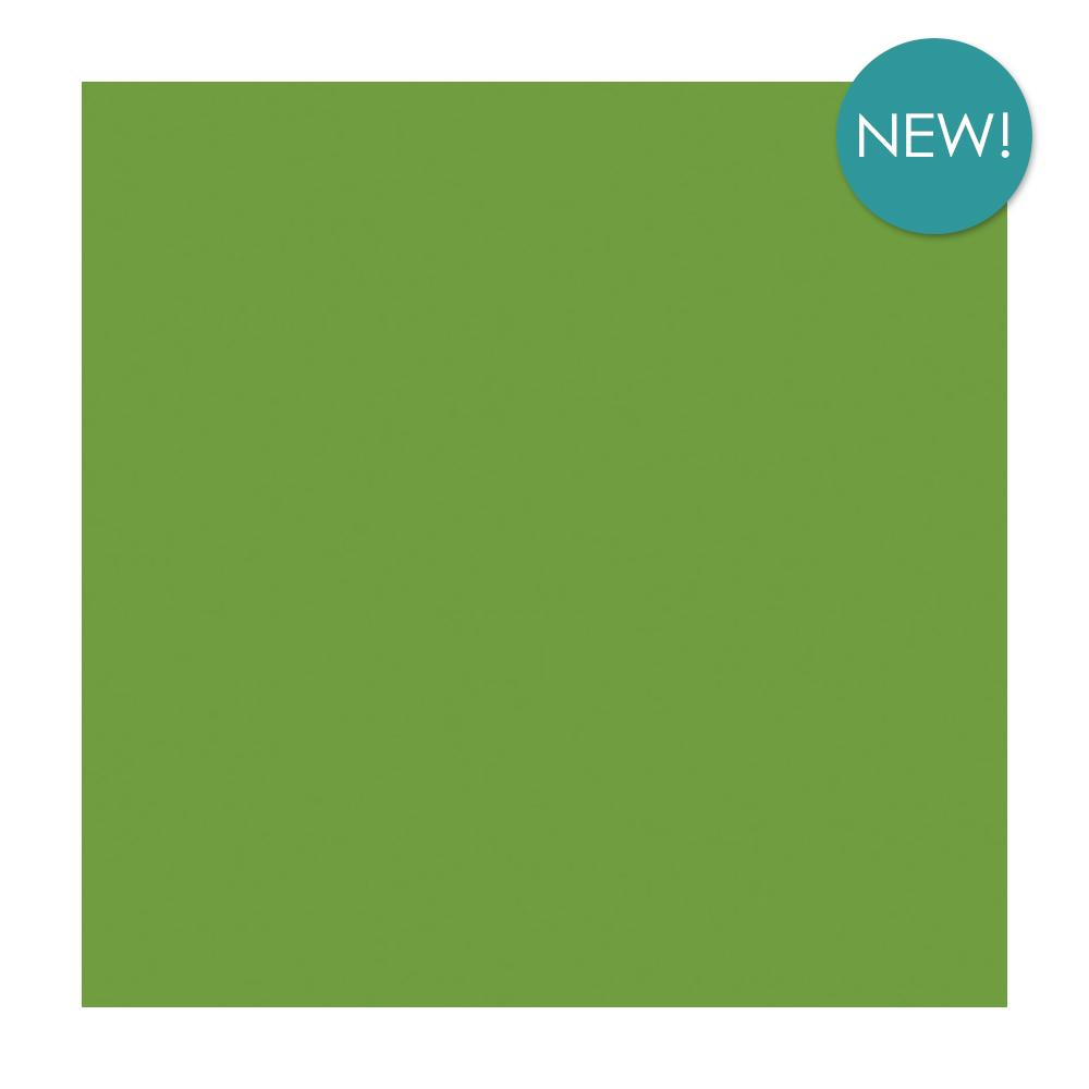 Kaisercraft - 12x12 inch, single sheet, Weave Cardstock 220 gsm - Lime