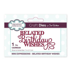 Creative Expressions - Mini Expressions Collection Belated Birthday Wishes