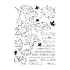 Memory Box - Clear Stamp Set - Grateful Autumn