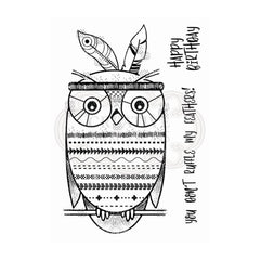 Woodware - Clear Singles Stamp - Bo-Hoot! 4 in x 6 in.