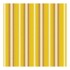 Heidi Grace - Daisy - Pinstripe 12X12 D/Sided Paper (Pack Of 10)