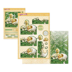 Hunkydory The First Signs Of Spring A4 Decoupage Set Little Duckling
