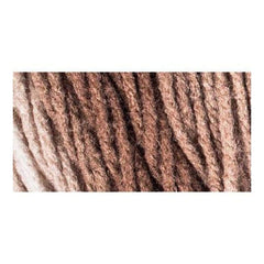 Red Heart Super Saver Ombre Yarn - Cocoa