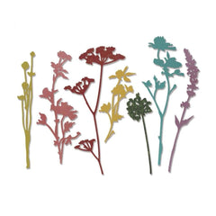 Sizzix Thinlits Dies 7 pack By Tim Holtz Wildflowers