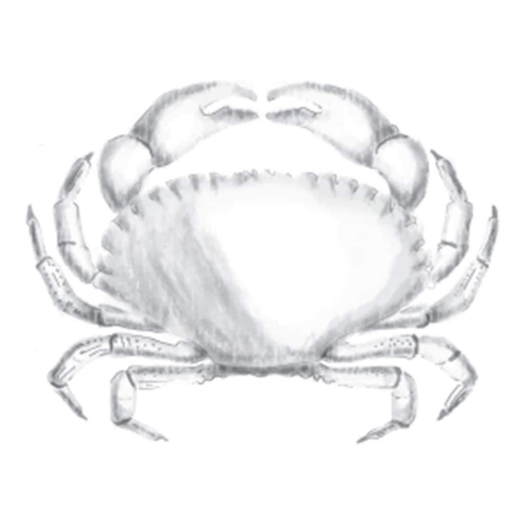 Spellbinders 3D Cling Stamp 2.75X4 Crab